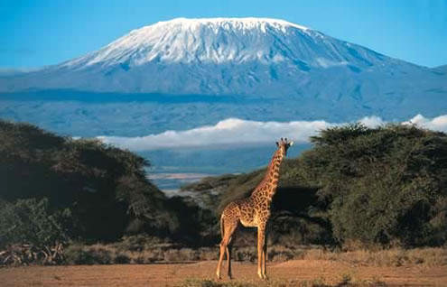 3 Days Nairobi to Mombasa Safari - Amboseli
