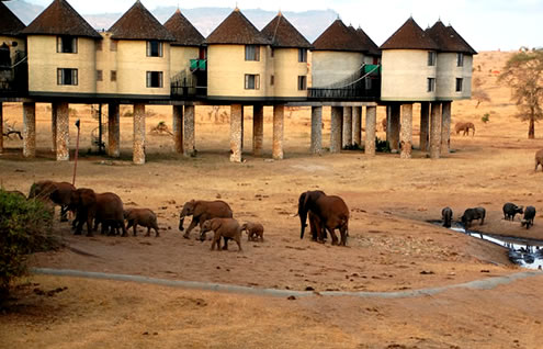 5 Days Nairobi to Mombasa Safari to Amboseli, Tsavo West, Taita Salt Lick and Tsavo East