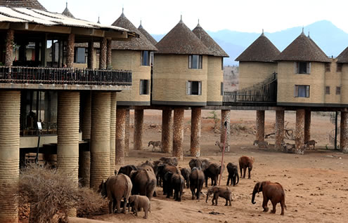 3 Days Mombasa Safari Package to Tsavo East and Taita Hills Salt Lick